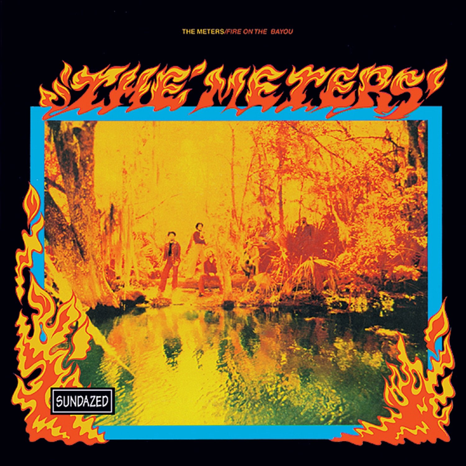 Meters, The - Fire On The Bayou CD