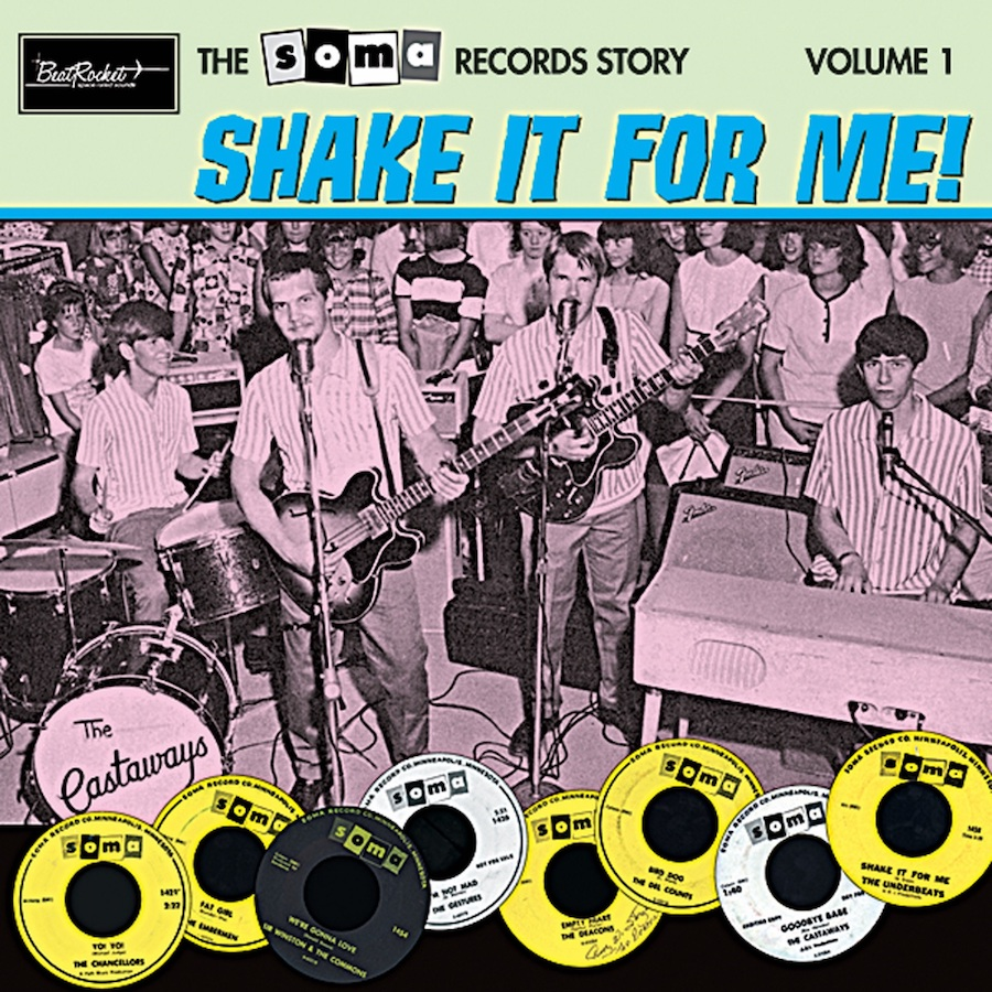 Various Artists - The Soma Records Story - The Soma Records Story Vol. 1-Shake It For Me! LP