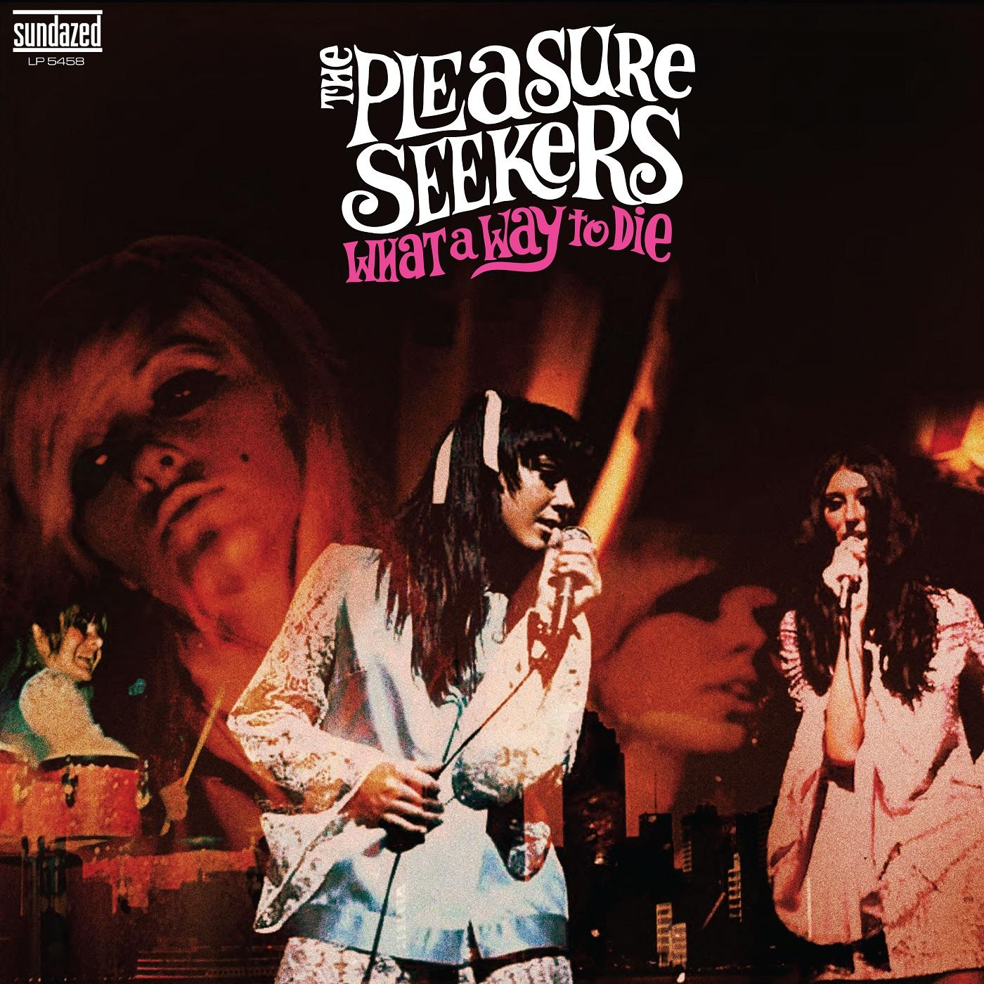 Pleasure Seekers, The - What A Way To Die - LP