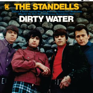 Standells, The - Dirty Water - MONO Edition LP