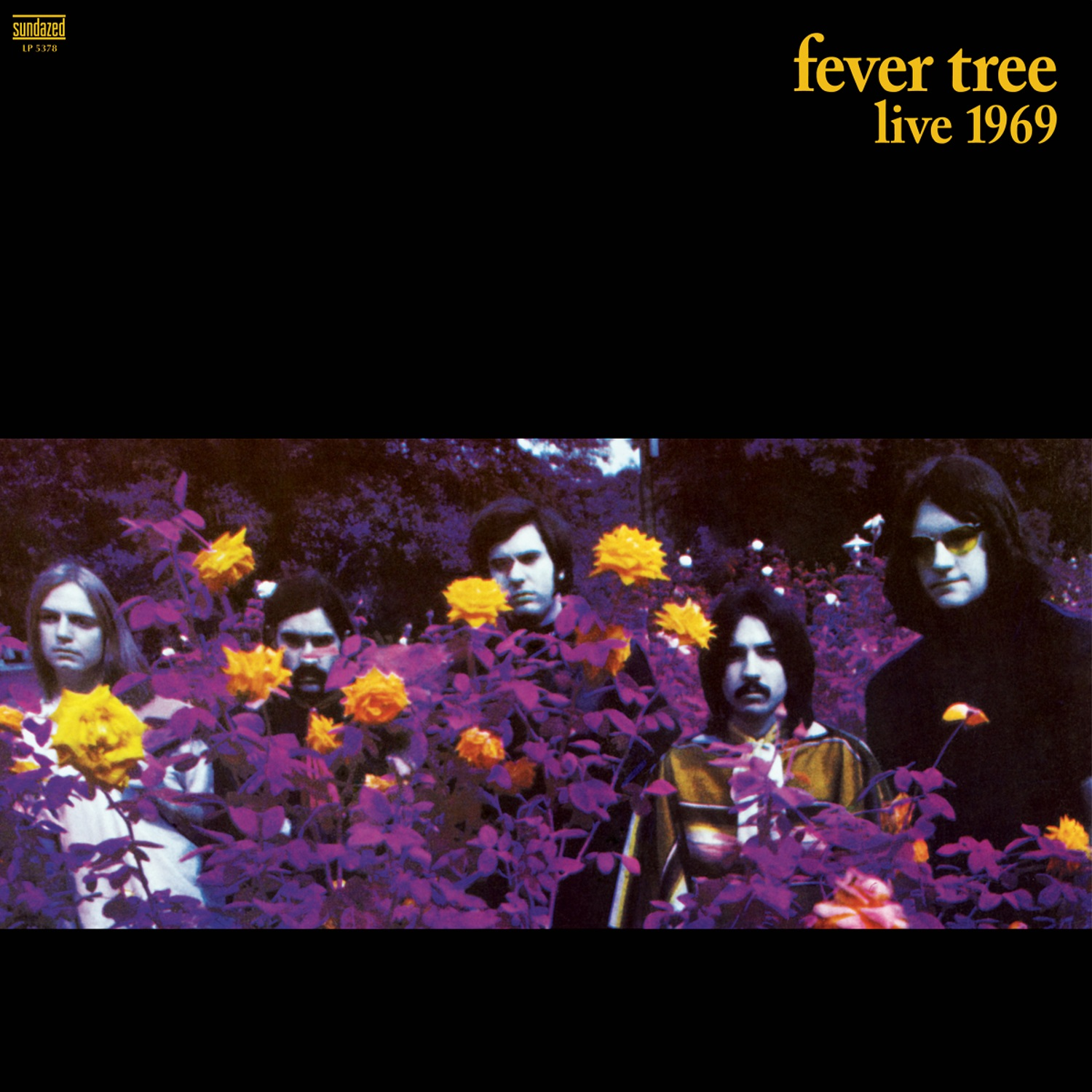 Fever Tree - Live 1969 LP