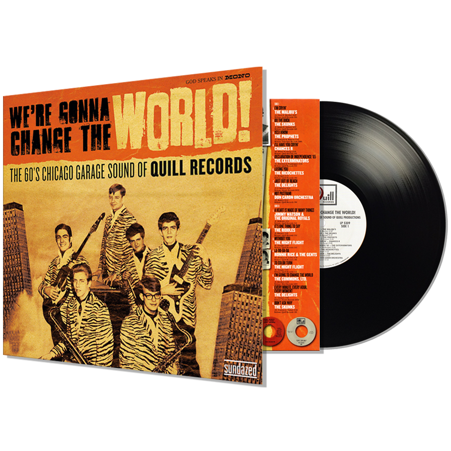 Various Artists - We're Gonna Change The World - We're Gonna Change The World: The 60's Chicago Garage Sound of Quill Records - LP