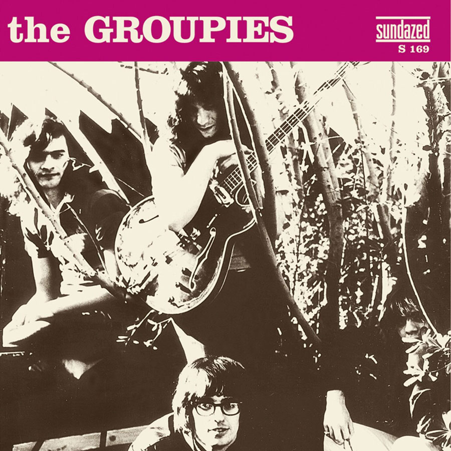 "Groupies, The - Down In the Bottom / You Changed Again 7"" Single"