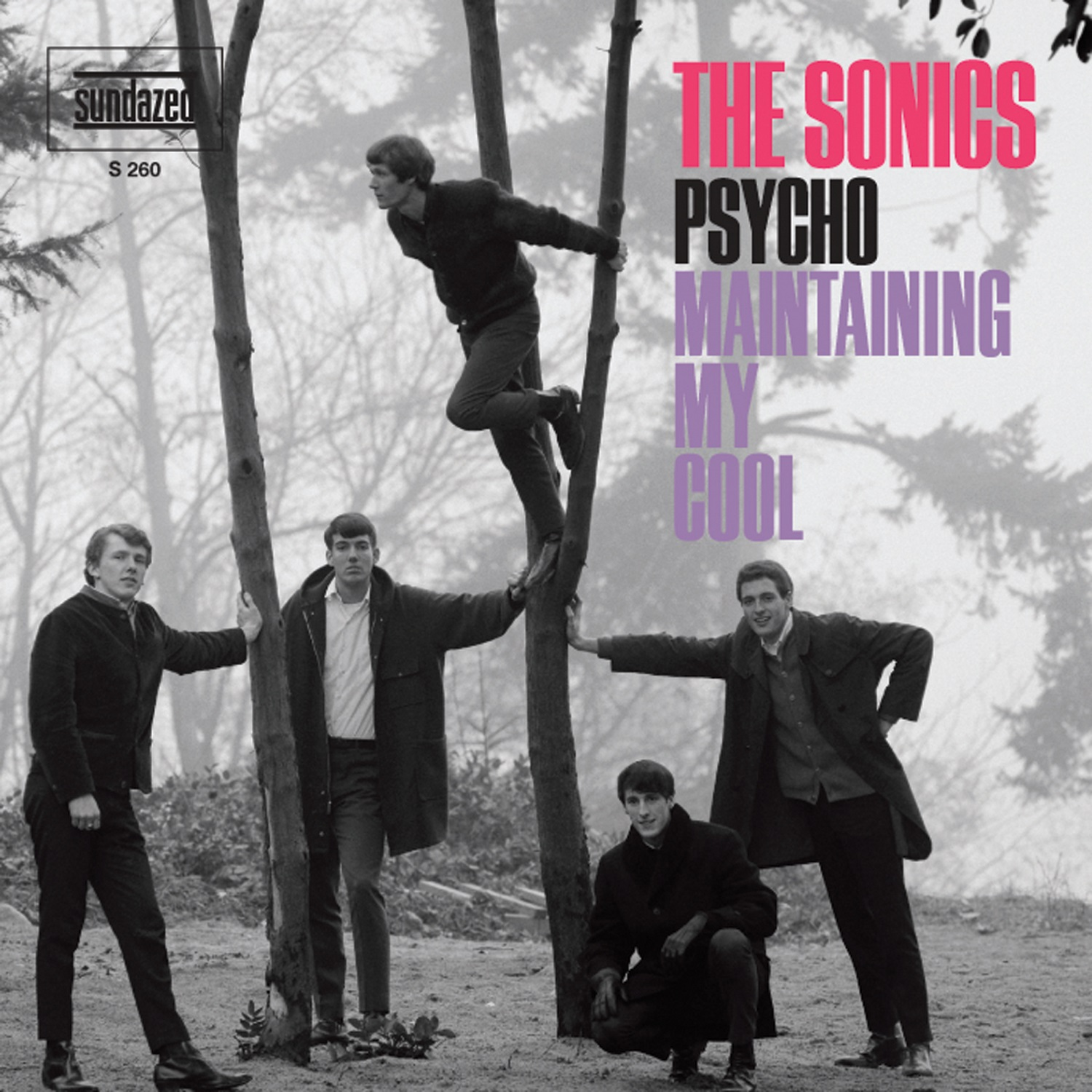 "Sonics, The - Psycho / Maintaining My Cool 7"" Single"