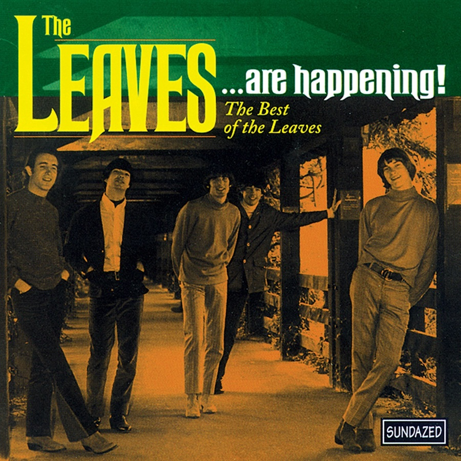 Leaves, The - The Leaves...Are Happening! The Best of The Leaves CD