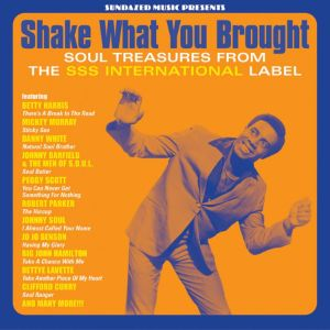Various Artists - Shake What You Brought!